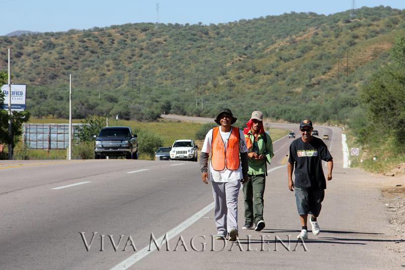 Peregrinos caminando a Magdalena de Kino, en honor a San Francisco
