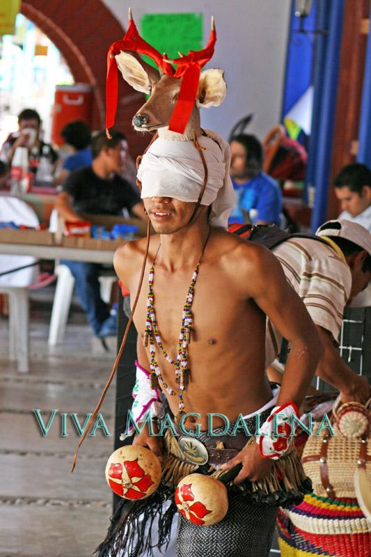 performing the deer dance at the fiestas de octubre in magdalena de kino sonora